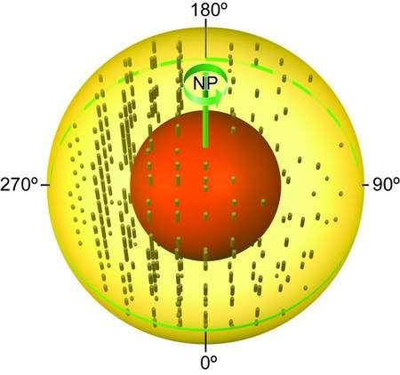 Représentation de la graine avec le noyau interne en rouge. Les bâtonnêts représentent l'orientation des cristaux de fer et leurs longueurs indiquent l'importance des anisotropies de propagation des ondes sismiques induites. Crédit : Precision Graphics-University of Illinois at Urbana-Champaign