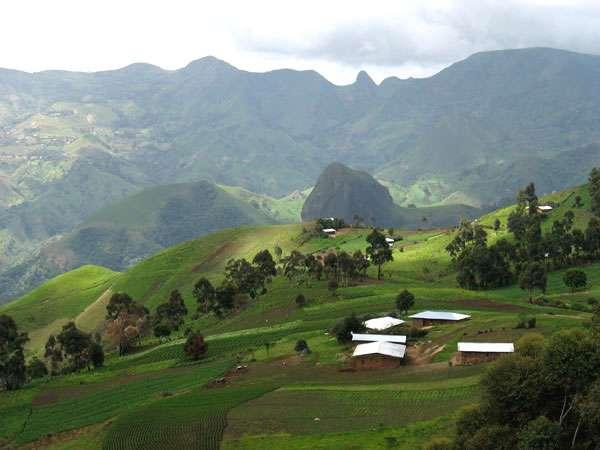 Caldeira des monts Bambouto. On distingue plusieurs dykes, dont, tout au fond, la dent de Babadjou (2.610 mètres), et le mont Mangwa qui culmine sur la droite (2.710 mètres). © Olivier Testa
