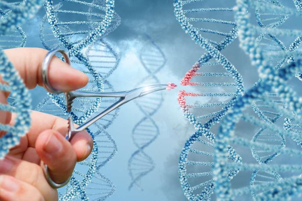 La technique Crispr-Cas, surnommée le ciseau moléculaire, a révolutionné l'édition génomique. © natali_mis, Adobe Stock