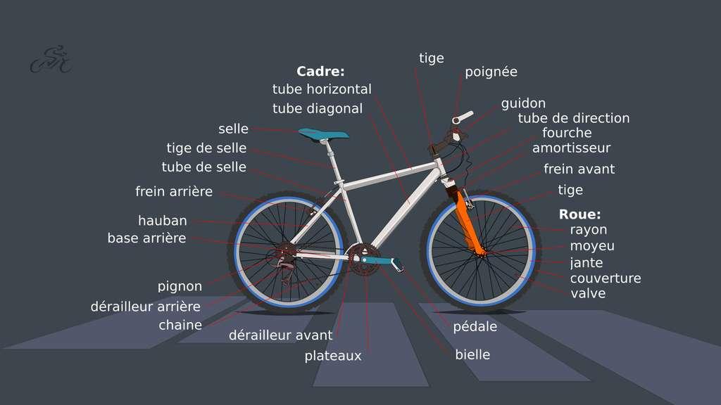 Anatomie d'un vélo