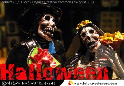 Sorciers d'Halloween