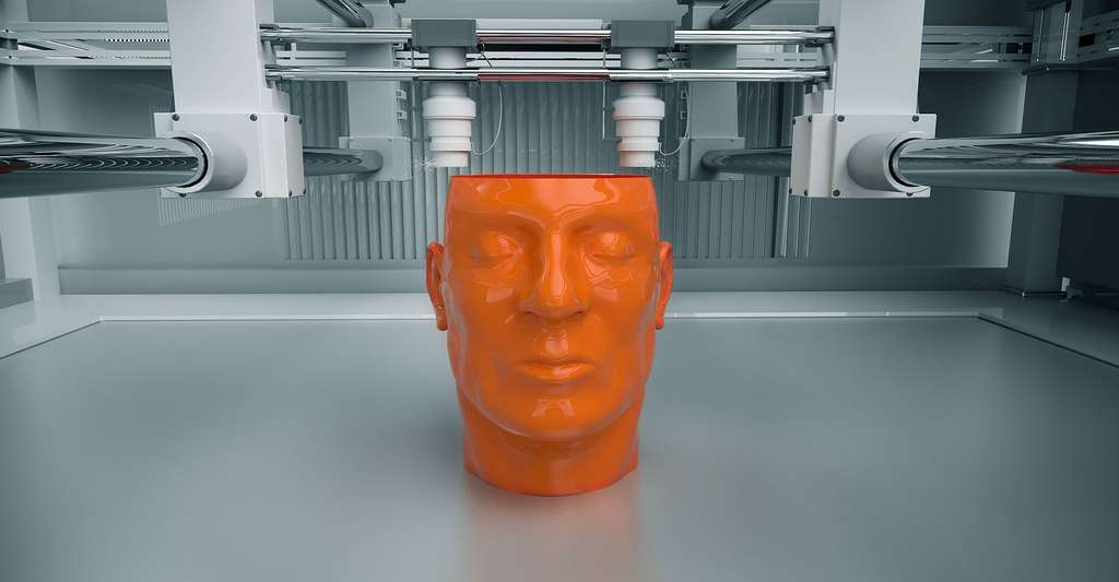 Tête humaine imprimée en 3D. © Dabarti CGI, Shutterstock