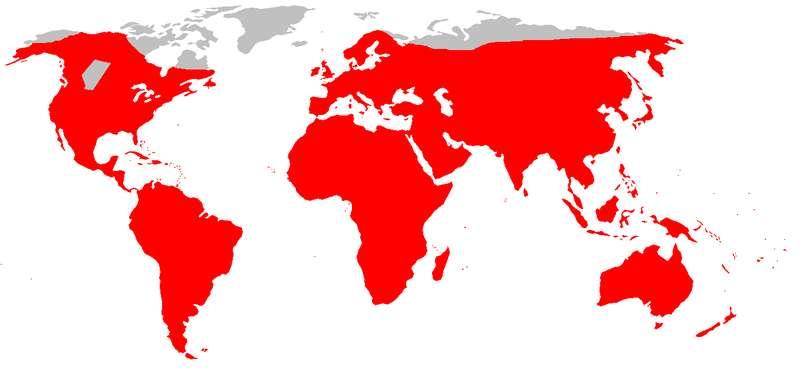 Carte de répartition mondiale du surmulot. © DR