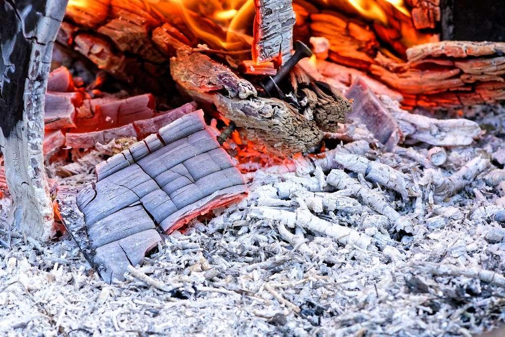 Les cendres de bois constituent un engrais naturel pour le jardin. © Alexas_fotos by Pixabay