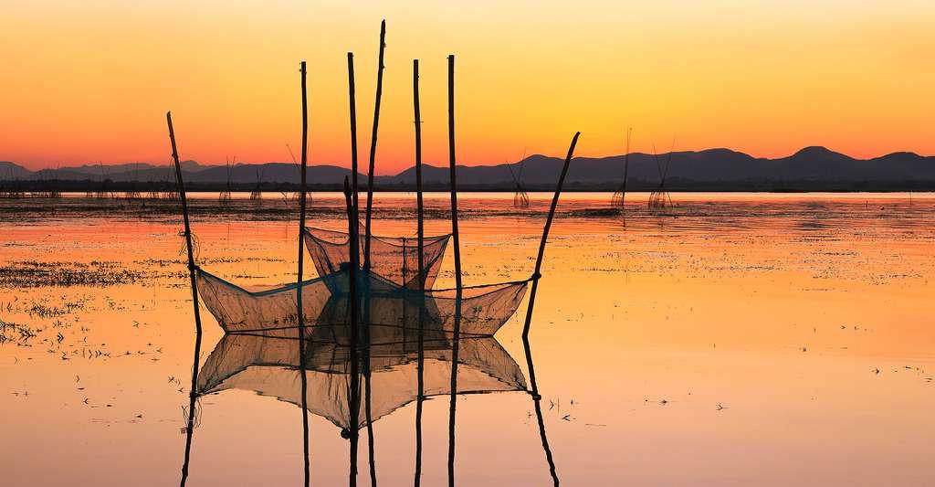 Filets de pêche au coucher de soleil. © Lungkit, Shutterstock