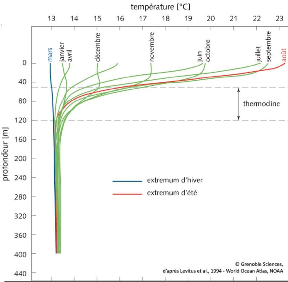 Distribution de température en Méditerranée en fonction de la profondeur, avec mise en évidence de la thermocline et de ses variations saisonnières. © D'après Levitus et al., 1994, World Ocean Atlas, NOAA