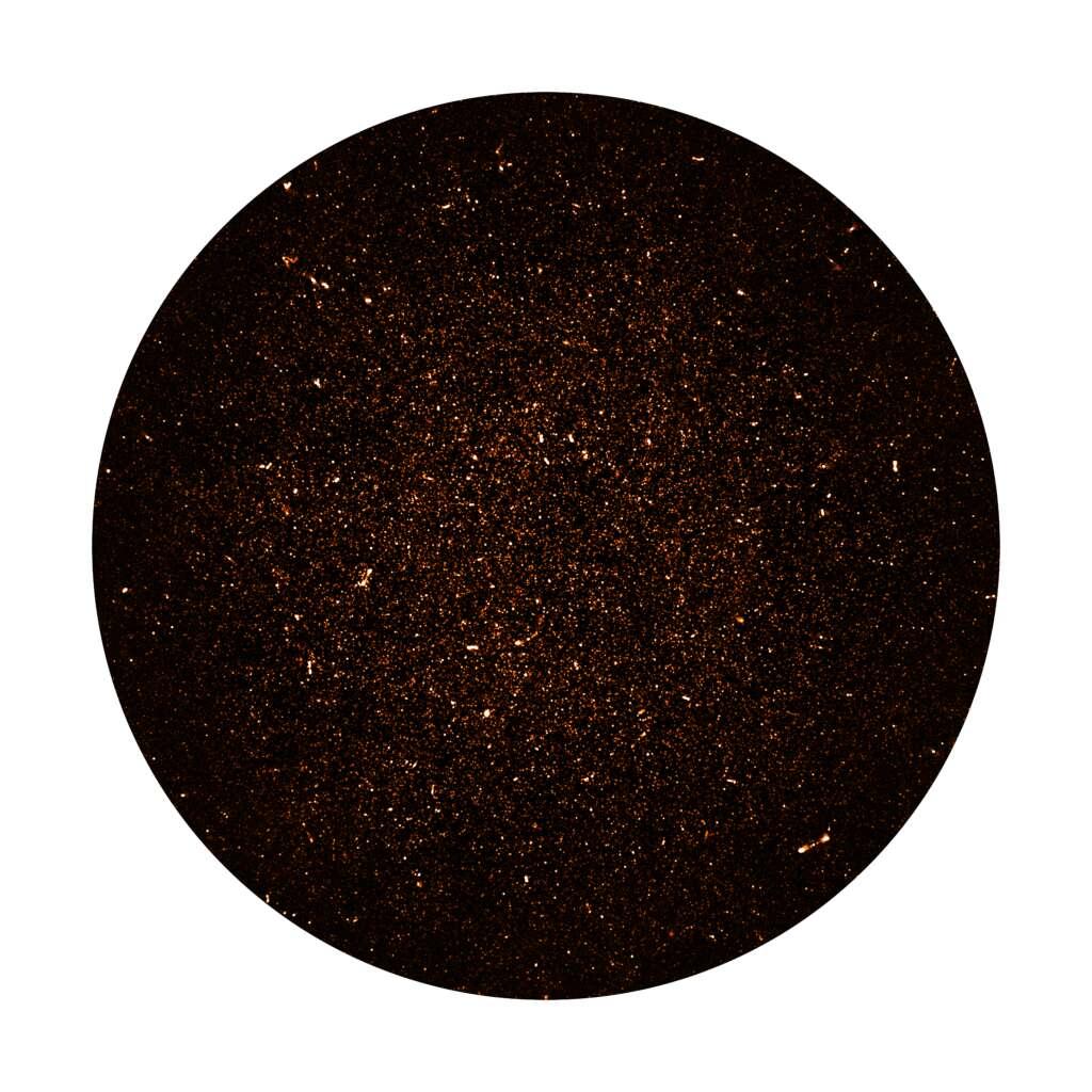Des milliers de galaxies sont visibles sur cette image radio, couvrant un degré carré de ciel près du pôle sud céleste, réalisée par le réseau de radiotélescopes MeerKAT en Afrique du Sud. Les spots les plus brillants sont des radio-galaxies lumineuses alimentées par des trous noirs supermassifs. Les myriades de points faibles sont des galaxies lointaines comme notre propre Voie lactée, trop faibles pour avoir été détectées auparavant. © Sarao, NRAO, AUI, NSF