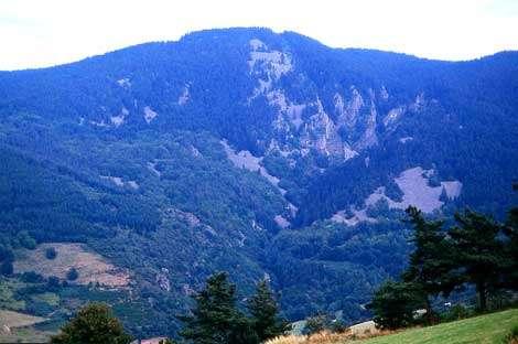 Le grand chirat à proximité du saut du Gier. Partiellement végétalisé, là où le recouvrement est le plus mince, il couvre tout le versant, se développe depuis le sommet, ensevelit partiellement les pinacles des niveaux de gneiss leptyniques au bas du versant. (La Valla en Gier, alt 1220m, cl B.E., déc 2003.)