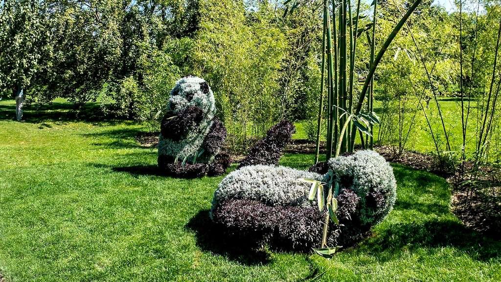 Sculpture végétale de pandas géants par le WWF
