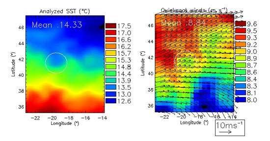 Exemple d'effet d'une anomalie locale de température de surface sur l'atmosphère. A gauche, température de surface moyenne sur quatre mois, mesurés par bateau et bouées (expérience POMME, janvier – avril 2001). A droite, vent moyen sur la même période obtenu par satellite. Le cercle blanc montre une anomalie de vitesse de vent au centre de la zone (vent assez faible, en vert, entouré d'un anneau de vent plus fort, en orange / rouge). Cette anomalie est associée à un tourbillon océanique caractérisé par un contraste en température de surface d'environ 1°C par rapport à l'environnement. Référence Bourras et al, J. Geophysical Research, 2004