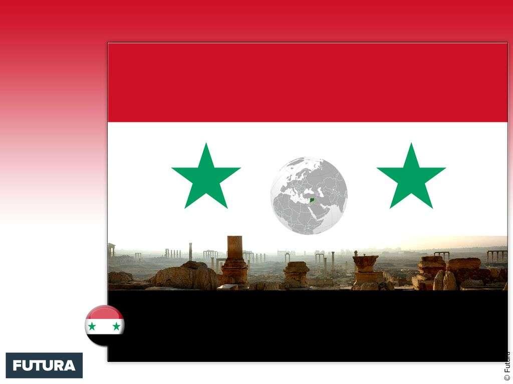 Drapeau : Syrie