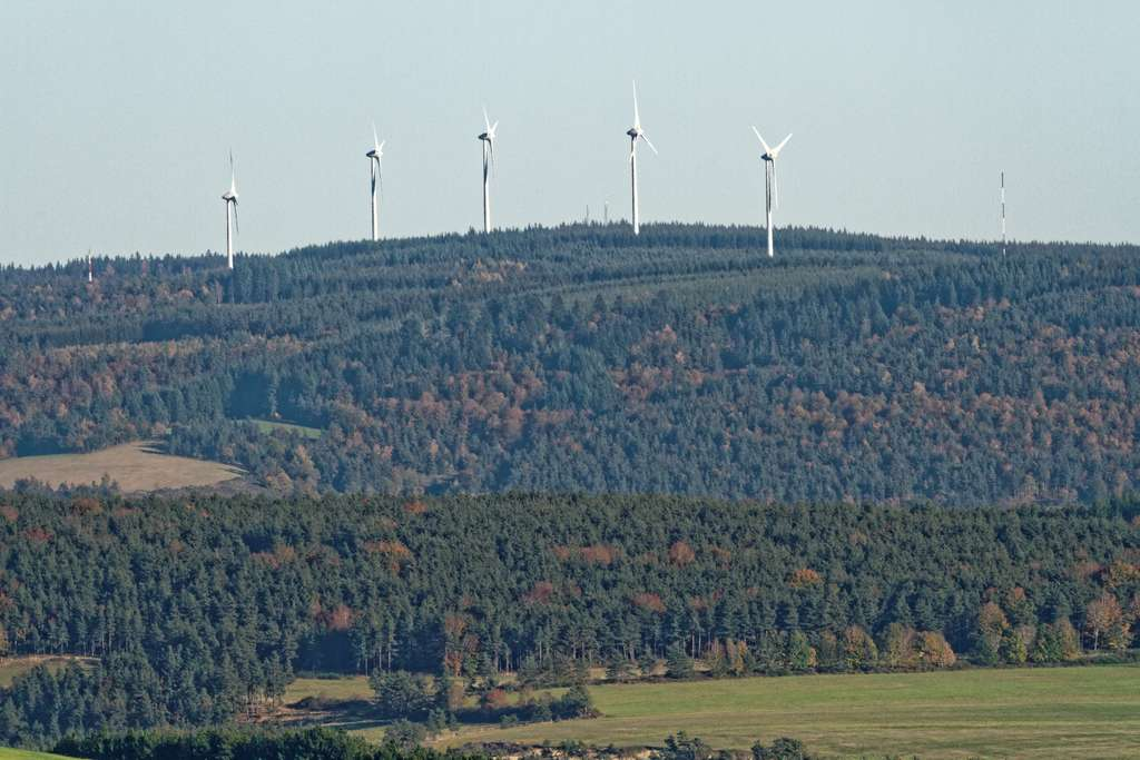 Les 8.000 éoliennes françaises sont quasiment à l'arrêt depuis lundi. © Loic Pinseel, Flickr