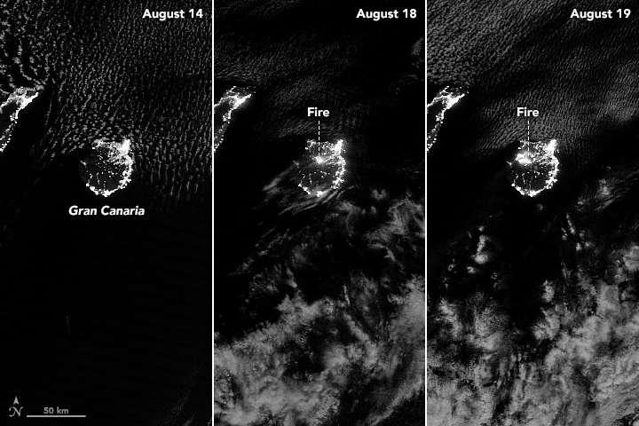 Sur cette image, on découvre des images de l'incendie vu depuis l'espace, de nuit. Les lumières sur les côtes sont celles qui émanent des zones habitées. © Earth Observatory, Nasa