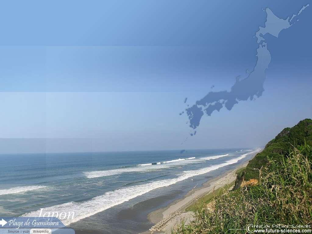 Japon - Plage de Gumihara