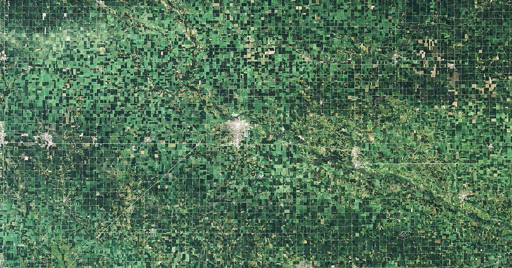 Dans l'Iowa, le passage d'un derecho a laissé des traces dans les champs de maïs. En haut, une image prise le 10 juillet 2020. En bas, la même région le 11 août 2020. Les cultures endommagées apparaissent en vert plus clair. © Nasa