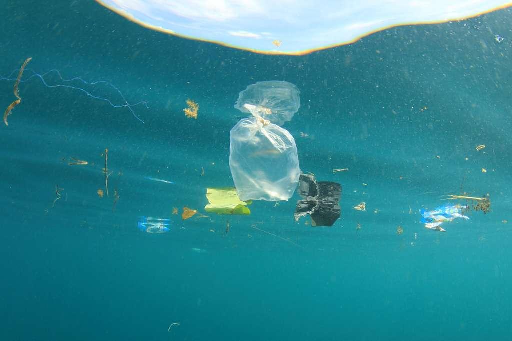 En 2050, il y aura plus de plastique que de poissons dans les océans si rien n'est fait. © Richard Carey, Fotolia