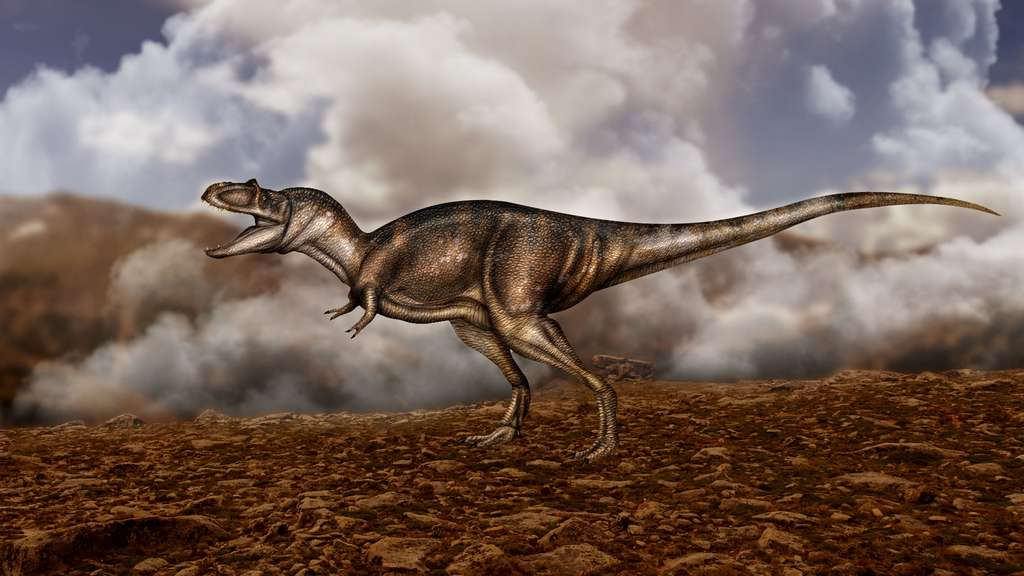 Albertosaurus sarcophagus, un parent de T-Rex