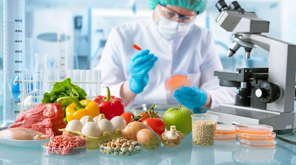 Dans l'agro-alimentaire, les biotechnologies sont utilisées pour la fabrication de fromages, d'aliments de synthèse ou encore de produits vegans. © Alexander Raths, Adobe Stock