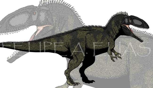 Mapusaurus roseae, l'un des plus grands théropodes