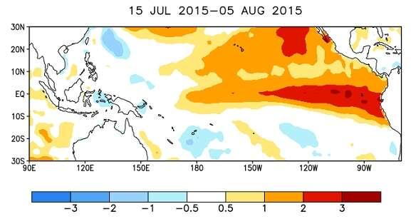 Les anomalies de température relevées à la surface de l'océan Pacifique entre le 15 juillet et le 5 août 2015 (en degrés Celsius). Le long de l'équateur, l'élévation par rapport à la moyenne se situe entre 1 °C et 2 °C au centre et atteint très localement 3 °C non loin des côtes de l'Amérique du Sud. © NOAA