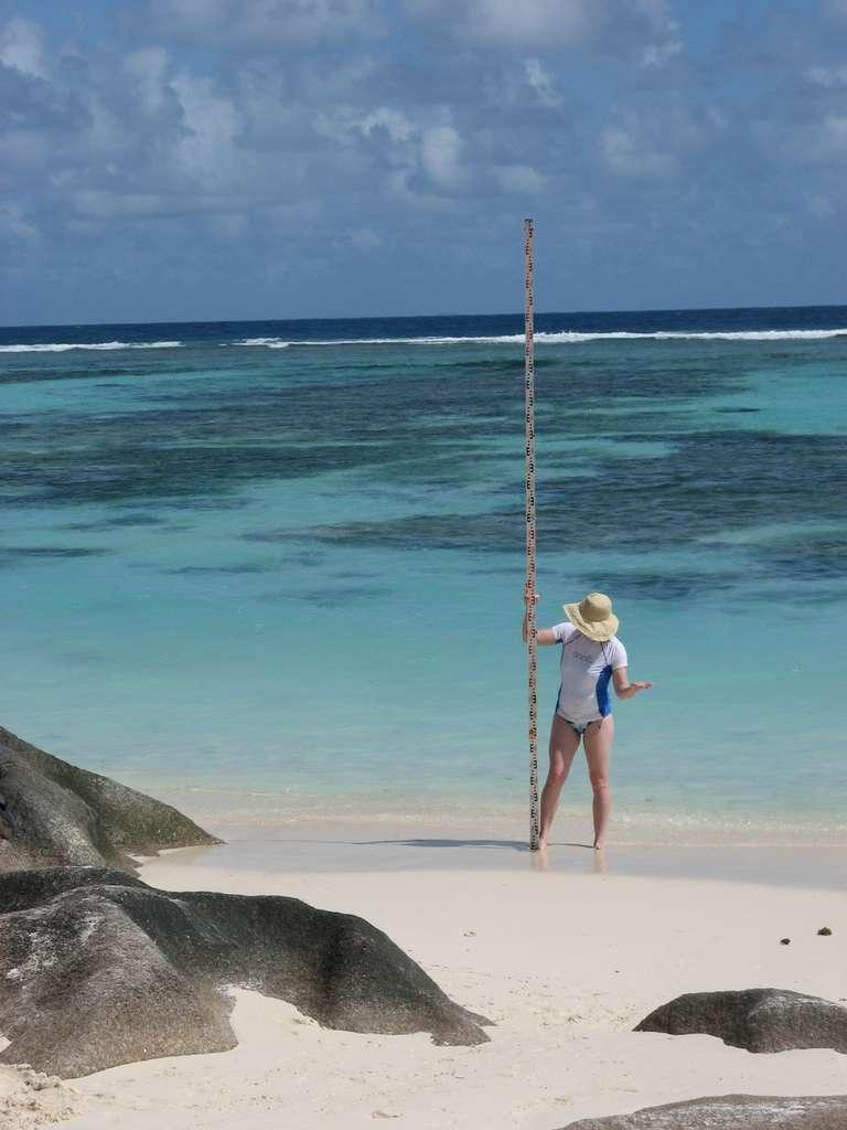 Il y a environ 128.000 ans, aux Seychelles, le niveau de l'océan Indien était plus élevé d'une hauteur comparable à celle du bâton vertical. Les autres océans étaient aussi plus élevés. © Université de Floride
