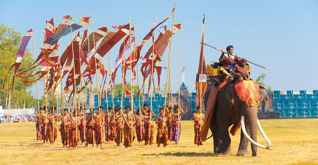 Birmanie, éléphant de parade. © Pius Lee - Shutterstock