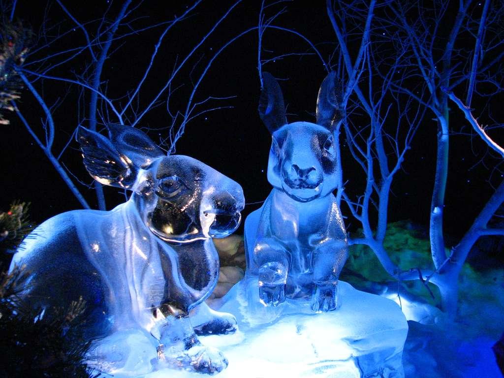 Sculptures sur glace du Gaylord Palms