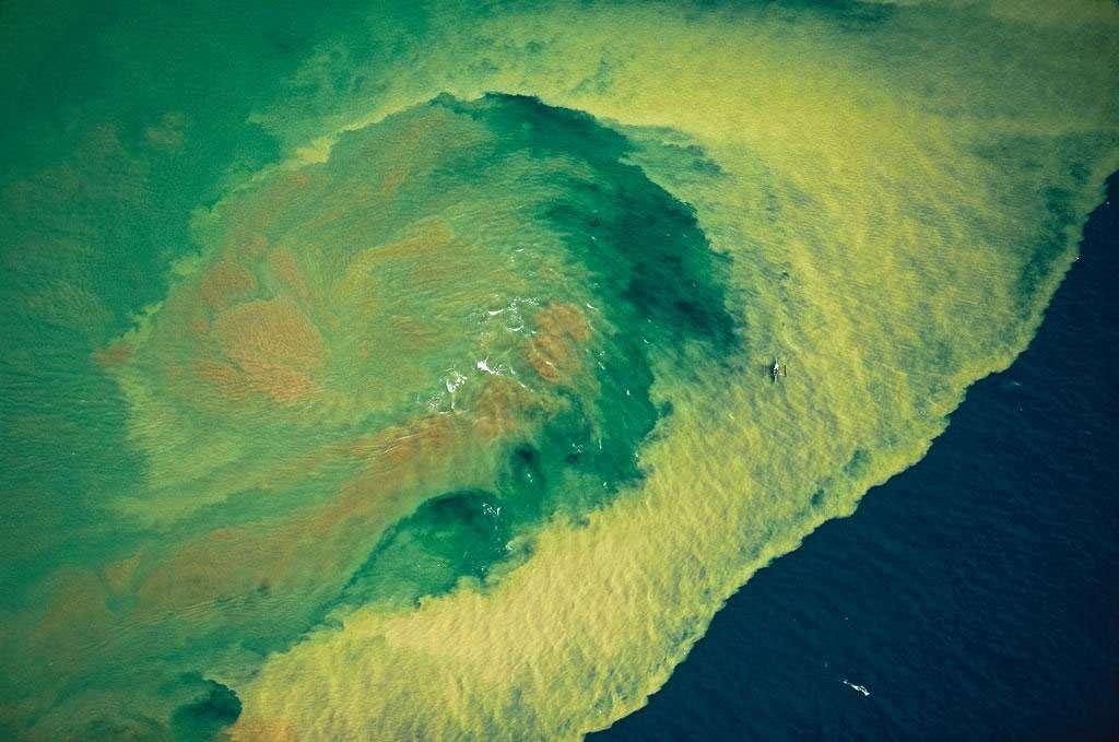 Rejets de mines d'or sur le littoral de l'île de Mindanao, Philippines (6°52' N – 126°03' E). Les îles des Philippines sont riches en gisements miniers de chrome, de cuivre, de nickel, d'argent et d'or comme ici dans l'île de Mindanao au sud de l'archipel. Bien que la production ne cesse de diminuer, l'exploitation des gisements aurifères constitue un apport économique pour le pays qui a produit 35,5 tonnes d'or en 2008 (1,5 % de la production mondiale). Il faut traiter une tonne de terre pour extraire un peu plus d'un gramme d'or. © Yann Arthus-Bertrand - Tous droits réservés