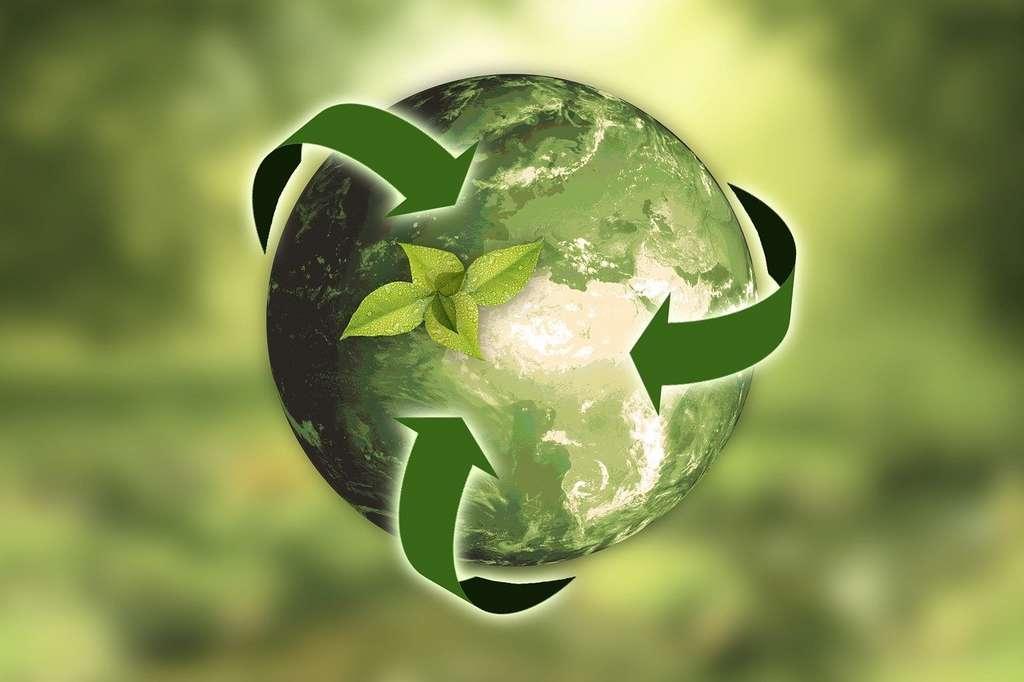 Faisons tout pour protéger notre Planète. © Annca, Pixabay, DP