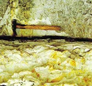 Entre les terrains du Crétacé et ceux du Tertiaire : une fine couche d'argile sombre… © E. Buffetaut