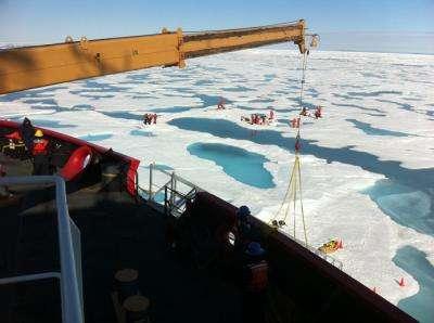 Les piscines d'eau apparaissant en été, ici en juillet 2011, sont particulièrement visibles sur cette photographie prise depuis un pont du brise-glace U.S. Healy. Pendant que certains scientifiques effectuent les prélèvements, d'autres surveillent la présence des ours polaires. © Sam Lanay, Woods Hole Oceanographic Institution