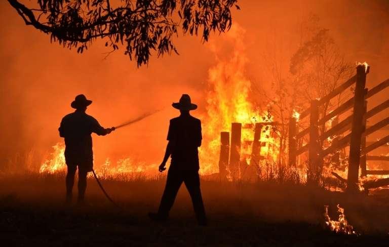 Les feux de brousse dévastateurs de 2019-2020 en Australie ont tué ou déplacé près de trois milliards d'animaux et coûté à l'économie environ 7 milliards de dollars américains. © Peter Parks, AFP