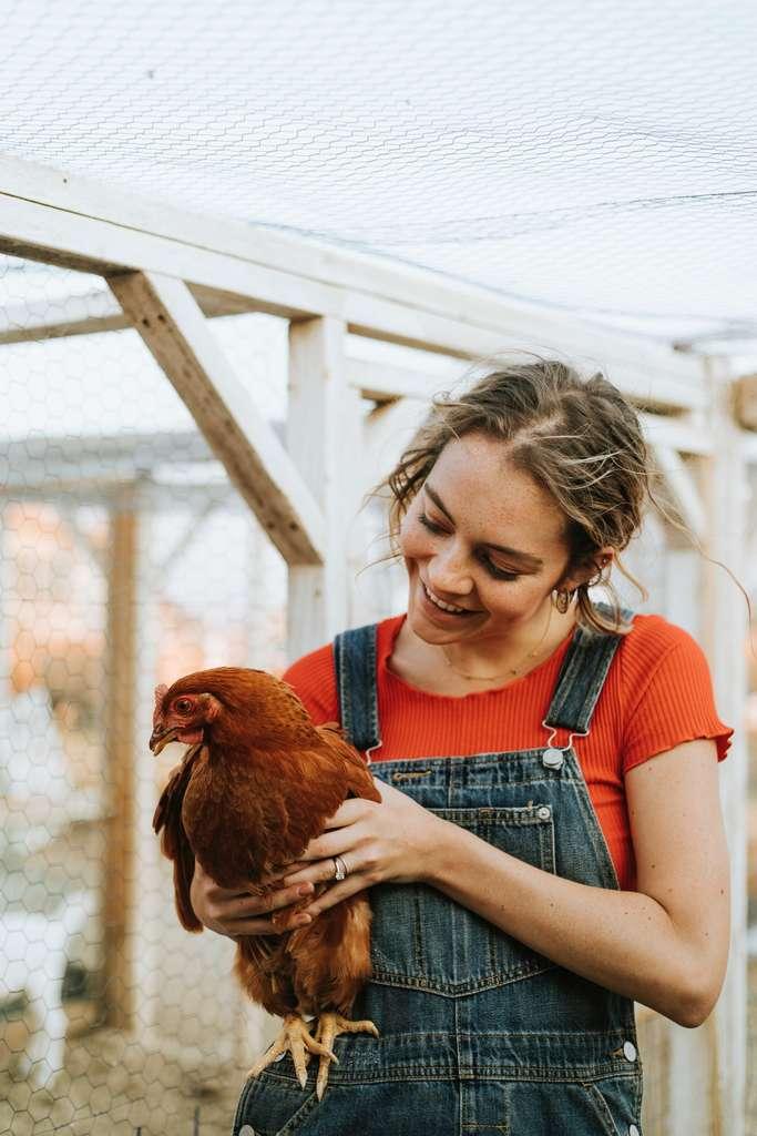 Il faut revoir notre consommation d'animaux à la baisse tant pour notre santé, la planète et les rapports sociaux qui nous lient avec eux. © rawpixels, Pexels