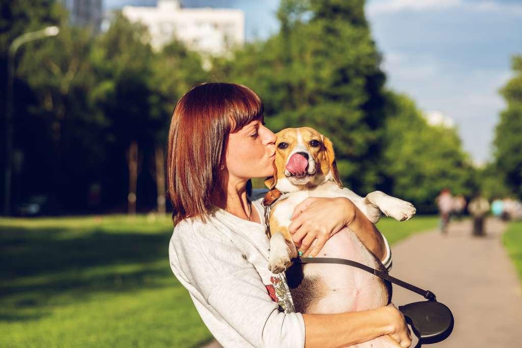 Les propriétaires de chiens sont plus heureux que les propriétaires de chats. © Artem Beliaikin, Unsplash
