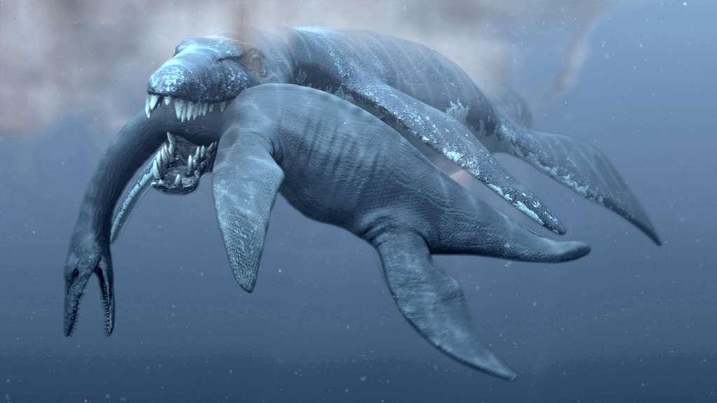 Un Predator X, alias Pliosaurus funkei, a choisi son plat du jour : un plésiosaure. © Natural History Museum, université d'Oslo