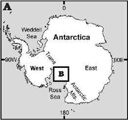 Zone de la découverte. Crédit Acta Palaeontologica Poloncica