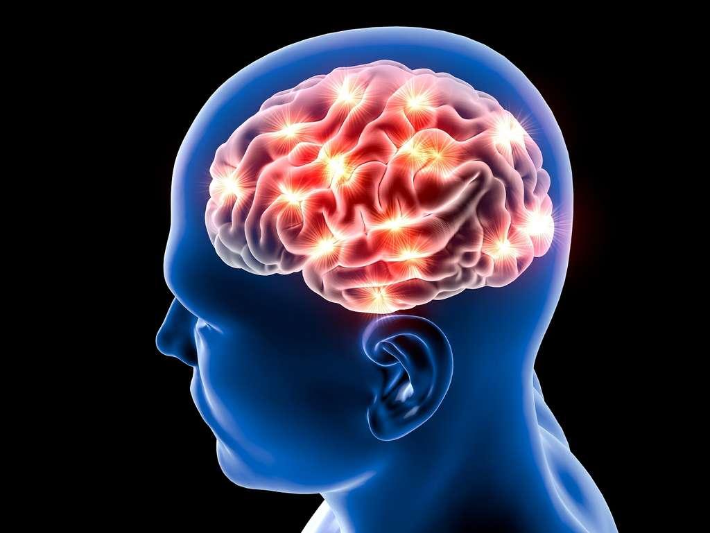 Avec la méditation de pleine conscience, la connectivité cérébrale change ; pas avec la relaxation. © Naeblys, Shutterstock