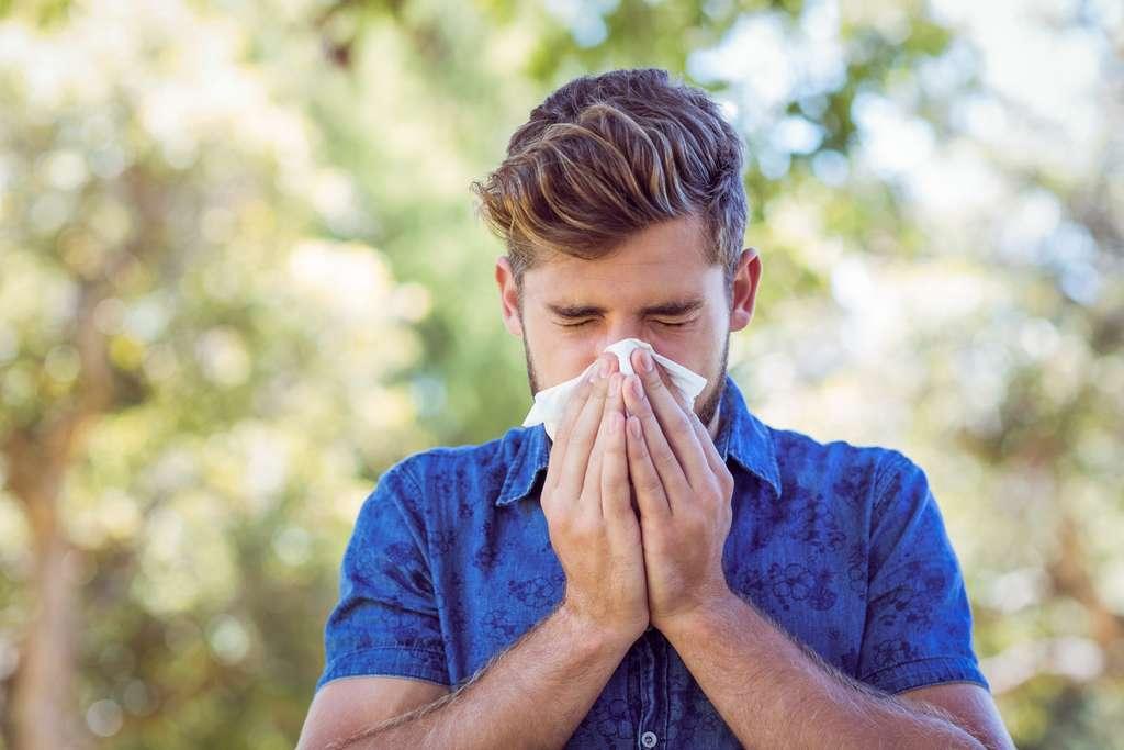 Les allergies peuvent être très handicapantes au quotidien, notamment si elles occasionnent d'autres réactions comme de l'asthme. © WavebreakMediaMicro, Adobe Stock.