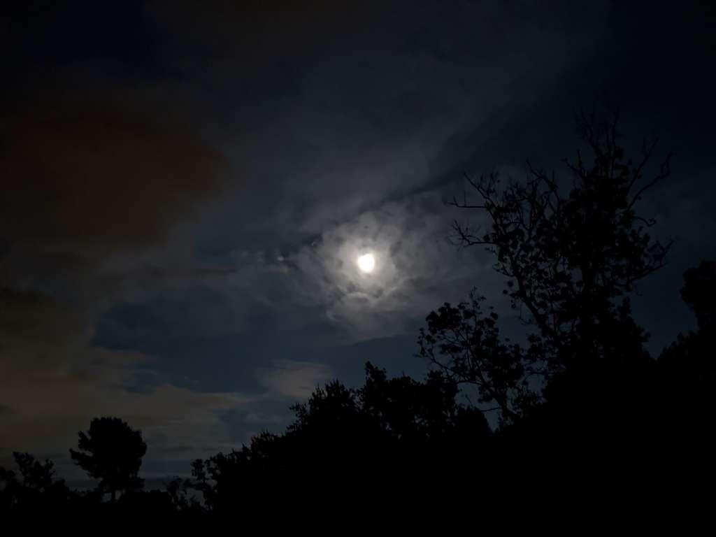 Photo prise en pleine nuit avec le mode nocturne du Pixel 4a. © Marc Zaffagni
