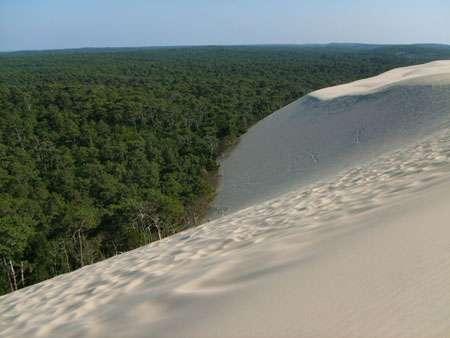 La dune du Pyla est la plus haute d'Europe. © Lena Glockner, CC by-nc 2.0