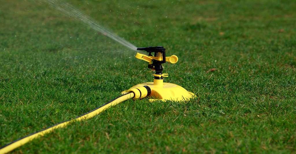 Il est impératif de bien régler le système d'arrosage afin d'économiser l'eau. © Deviddo, Fotolia