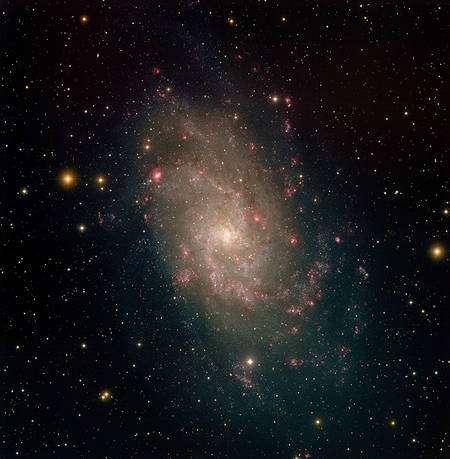 Image en optique obtenue au Kitt Peak de M33. Cette galaxie est située dans la constellation du Triangle et fait partie du Groupe Local comprenant entre autres Andromède et la Voie Lactée. Cliquez pour agrandir (Crédit : NOAO/AURA/NSF/T.A.Rector).