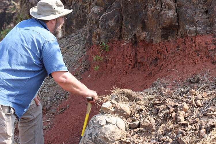 L'auteur principal de l'article publié dans Science, Paul Renne, examinant un horizon du sol rougi entre les coulées de lave dans les trapps du Deccan. © Mark Richards