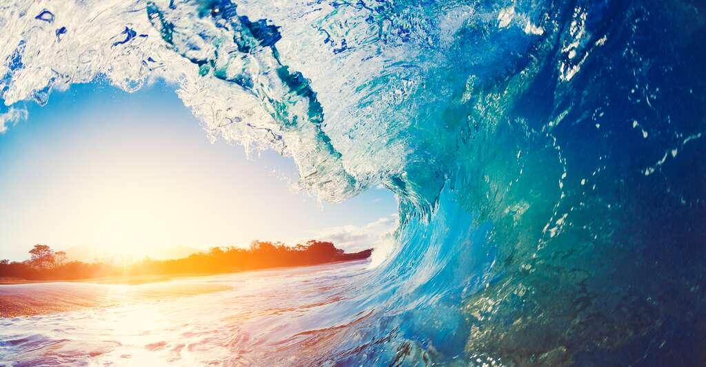 De quoi est composée l'eau salée des océans ? © EpicStockMedia, Shutterstock