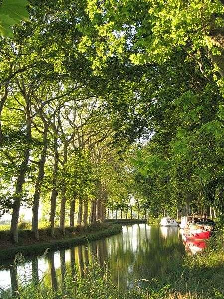 Le canal du Midi traverse 65 écluses et compte 7 ponts-canaux. Les platanes le bordant ont en moyenne 200 ans. © Michiel1972, Wikimedia common, CC by-sa 3.0