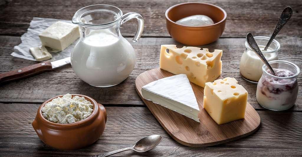 Il est important d'avoir une alimentation équilibrée et riche en calciim. © Alexpro9500 - Shutterstock
