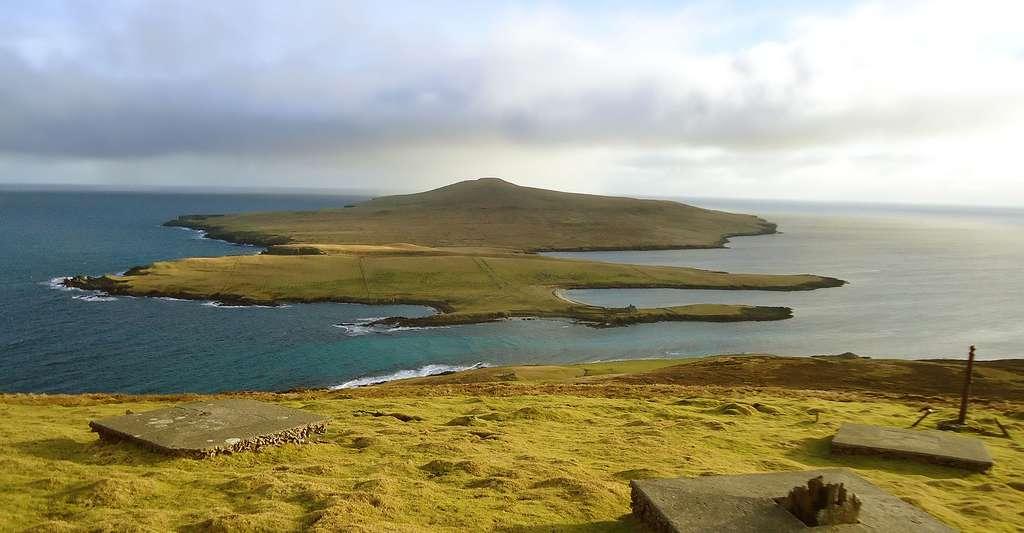 L'île de Noss, dans l'archipel des Shetland, en Écosse. © Vicky Brock, Wikimedia Commons, CC by-sa 2.0