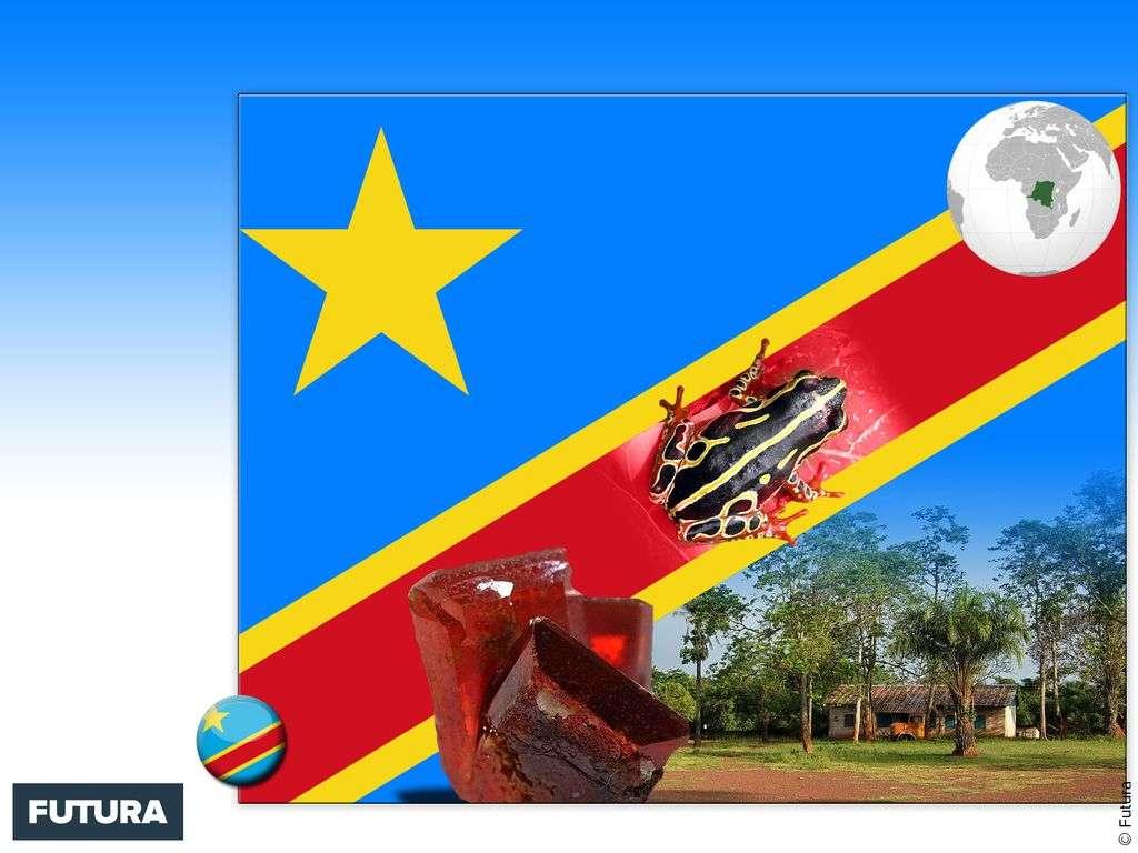 Drapeau : République démocratique du Congo