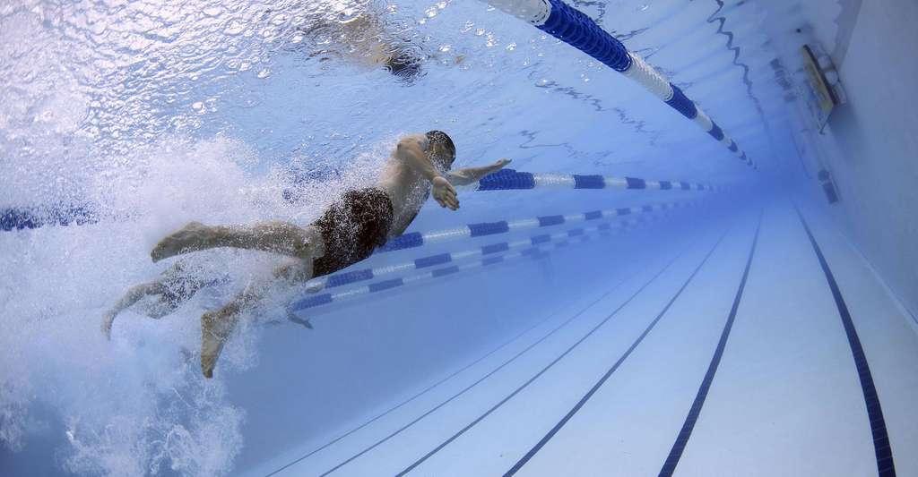 Entretenir son dos par la natation. © 12019, Pixabay, DP
