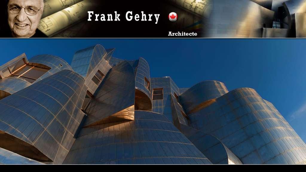 Le Frederick Weisman Art Museum de Minneapolis, par Frank Gehry